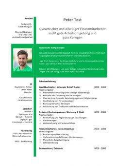 1 Lebenslauf-Finanzmitarbeiter_in-grün