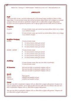 Lebenslauf - Vorlage mit roten Schriftfarbe und Rahmen