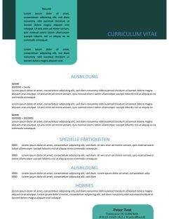 Skabelon Lebenslauf mit Zusammenfassung in text Box grün