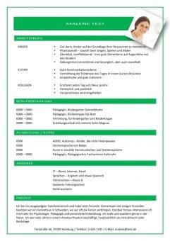 1 Lebenslauf-mit-Arbeitsprofil-grün