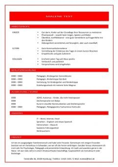 1 Lebenslauf-mit-Arbeitsprofil-rot