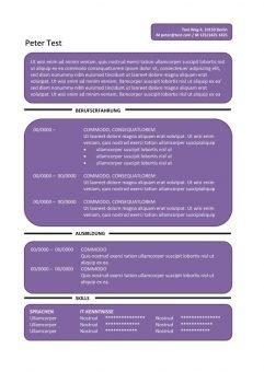 CV-Vorlage Textfelder - lila