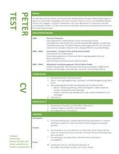 Layout Lebenslauf mit Strichen - grün