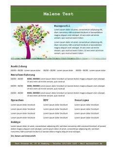 Lebenslauf mit Profil - grün