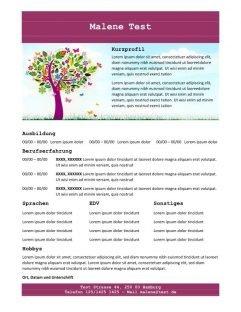 Lebenslauf mit Profil - lila