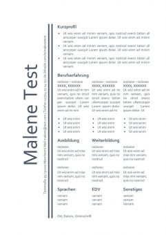 Muster - CV - Lebenslauf - blau Schriftfarbe