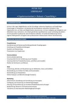 Lebenslauf Kompetenzen mit Berufsqualifikation - blau - 2 Seiten