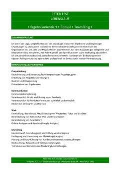 Lebenslauf Kompetenzen mit Berufsqualifikation - grün - 2 Seiten