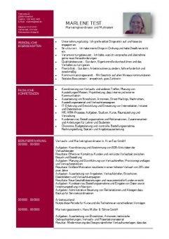Lebenslauf Kompetenzen mit persönlichen und fachlichen Eigenschaften - rot