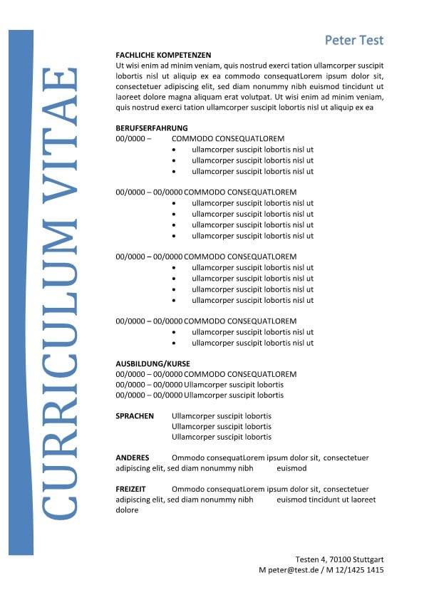 lebenslauf mit fachliche kompetenzen - blau