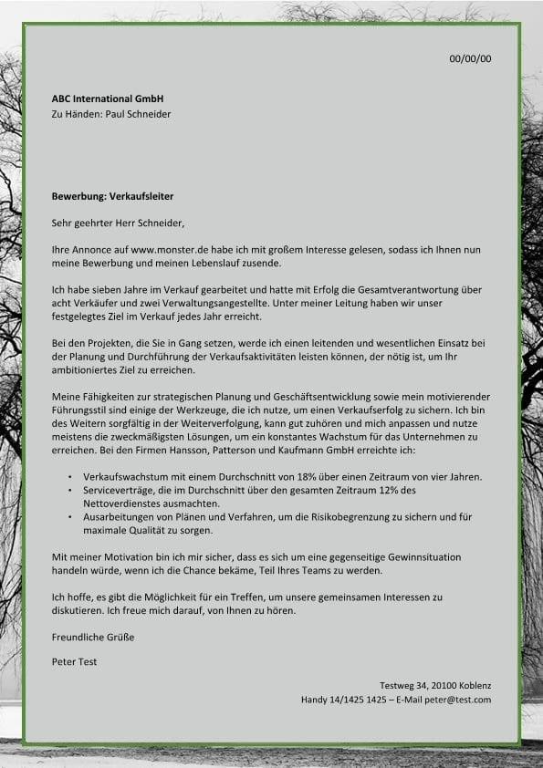 Verkaufsleiter m/w ergebnisorientiert - CV & Bewerbung
