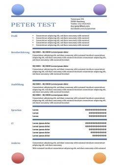 CV-Vorlage in der Tabelle - mit Kreisen copy