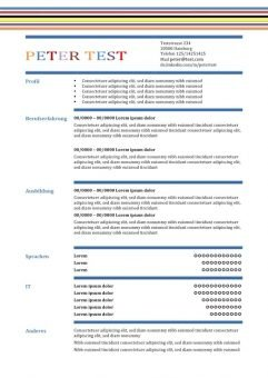 CV-Vorlage in der Tabelle - mit Linien