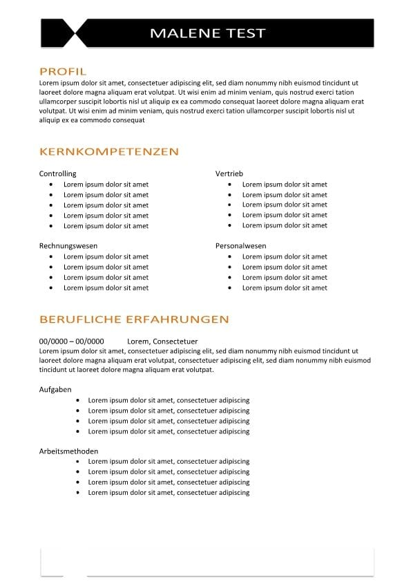 Vorlage mit beruflichen Kompetenzen - CV & Bewerbung