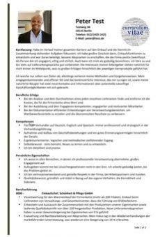 1-Lebenslauf-Kompetenzen-mit-Zusammenfassung-und-Erfolge-2-Seiten